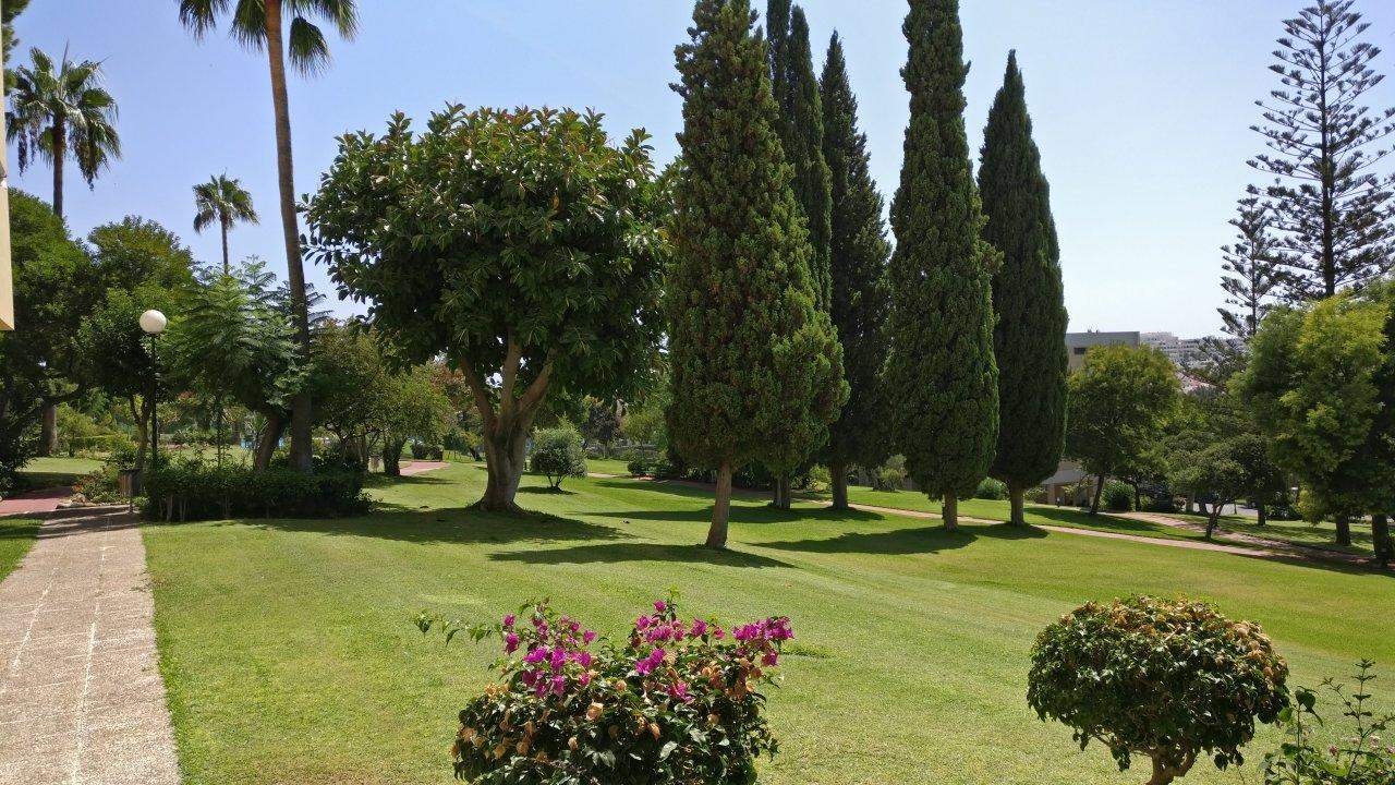 well-kept gardens