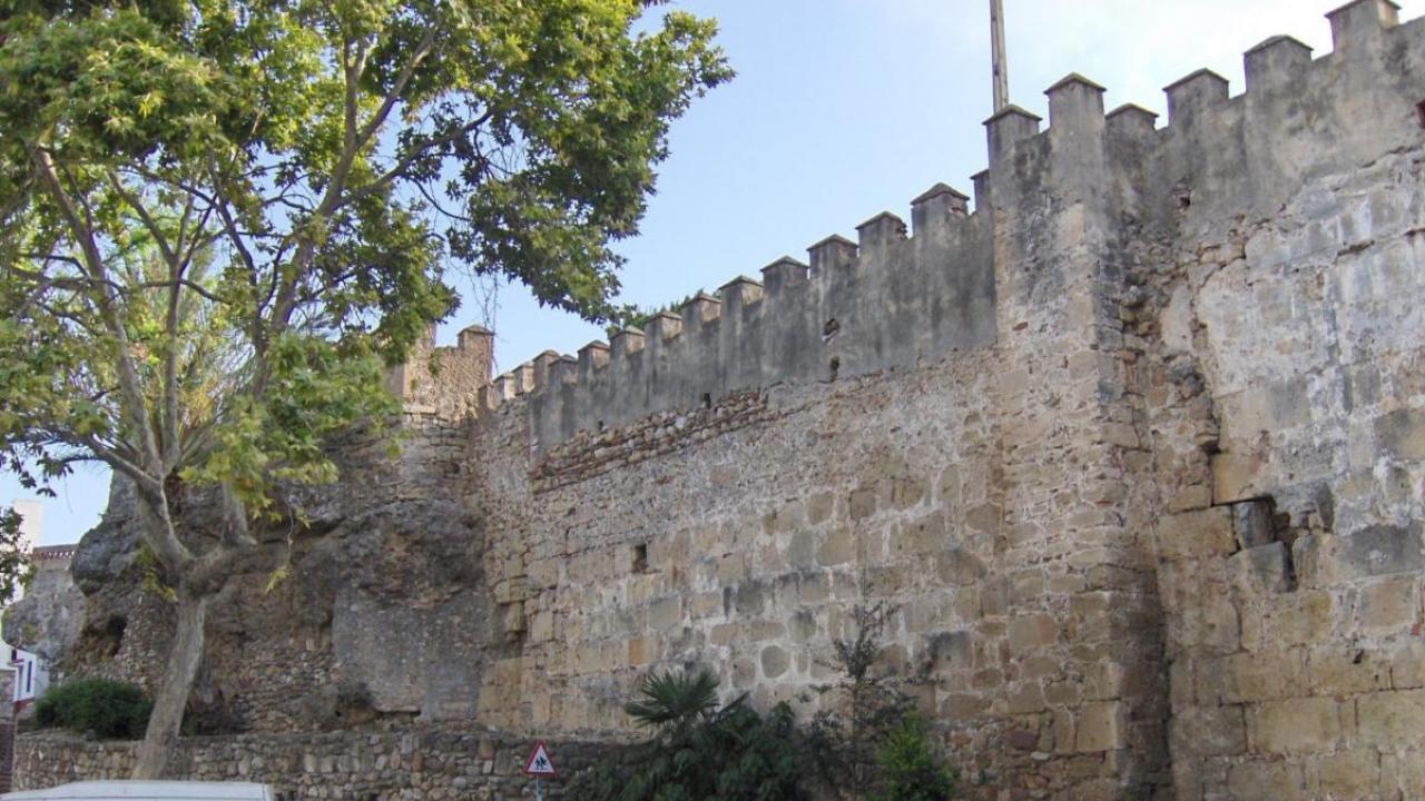 historic wall